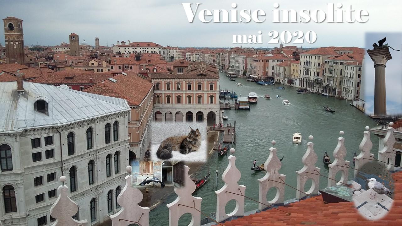Venise insolite mai 2020